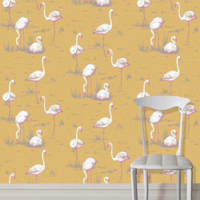 cont_selection_flamingos.jpg